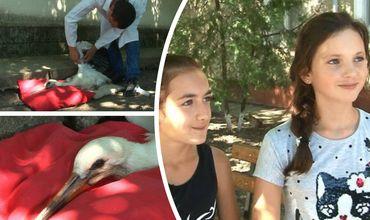 Две школьницы в Григориополе спасли аистенка.