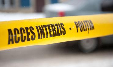 В Страшенах автомобиль Mercedes врезался в повозку: лошадь погибла
