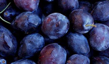 Производители слив жалуются, что фрукты остаются на складах, потому что они не могут их продать.
