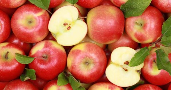 Din cauza înghețurilor, recolta de mere din țară va scădea cu 20-25% thumbnail