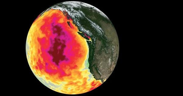 Аномальные горячие «пузыри» массово убивают жизнь в океане thumbnail