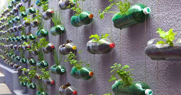 proiecte ecologice)