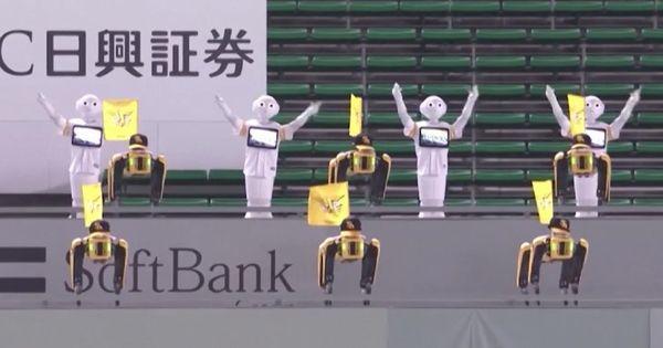 В Японии болельщиков бейсбольной команды заменили роботами thumbnail
