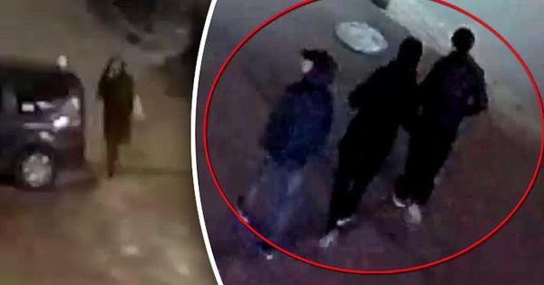 Сотрудники полиции задержали уроженца Яловен, ограбившего женщину в столице thumbnail