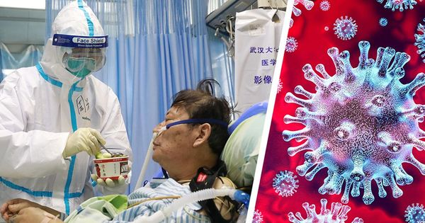 В Китае за сутки выявили 12 случаев заражения коронавирусом thumbnail