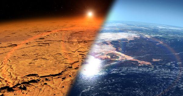 Найденные под морским дном бактерии помогут в поисках жизни на Марсе thumbnail