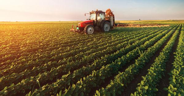 Compensarea contribuțiilor de asigurări sociale în domeniul agricol thumbnail