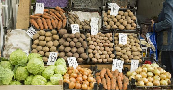 Платформа DA просит разрешить уличную торговлю сезонными овощами и ягодами thumbnail