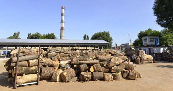 Некоторые категории граждан бесплатно получат дрова от примэрии thumbnail