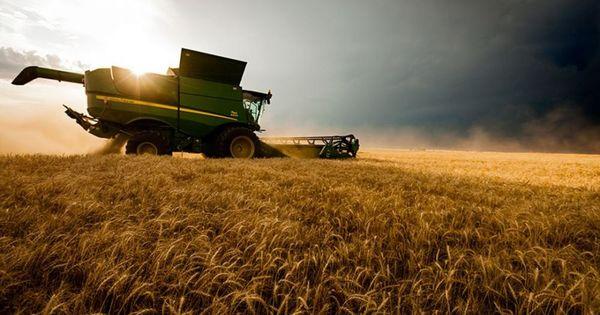 FMI a aprobat proiectul de lege pentru susținerea agricultorilor thumbnail