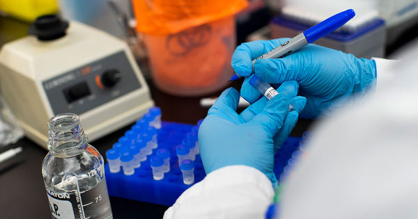 Ученые создали способное уничтожить коронавирус антитело thumbnail