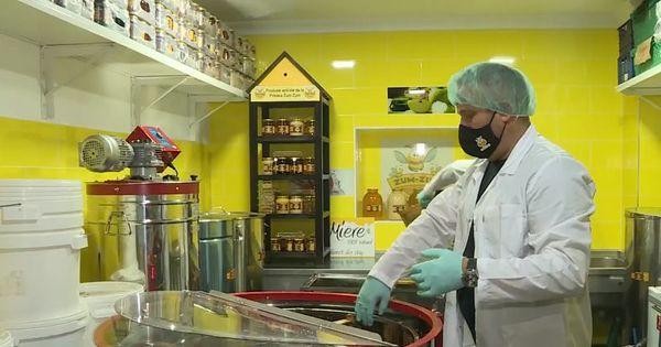 Молдавский мед в этом году подорожает thumbnail