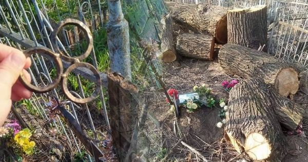В Кишиневе неизвестные устроили разгром на кладбище thumbnail