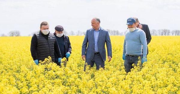 Sturza, critici dure la adresa guvernării pe fonul secetei: Virusul ne-a luat mințile thumbnail