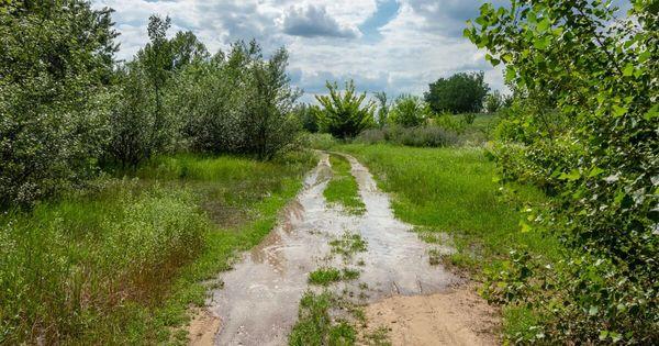Вода понемногу уходит, но в ряде сёл готовятся к возможному подтоплению домов thumbnail