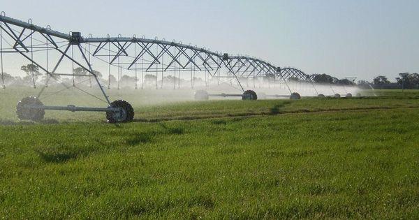 Себестоимость воды для орошения в Приднестровье снижается thumbnail