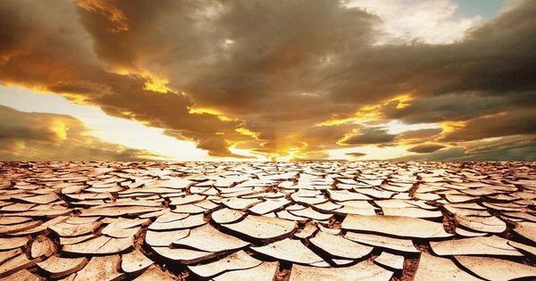 Ученые объяснили, как засуха может погубить Землю thumbnail
