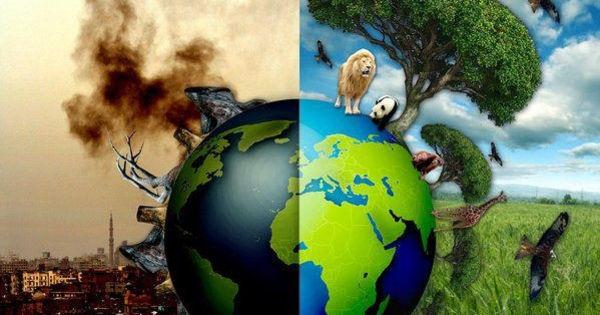 Ziua Pământului: Cât de importantă este ocrotirea mediului înconjurător -  Stiri.md - Stiri.md