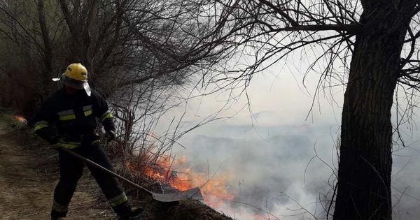 Incendiu în Rezervația Prutul de Jos: Pompierii au luptat 12 ore cu flăcările thumbnail