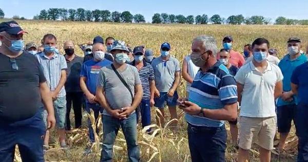 Фермеры требуют отставки министра сельского хозяйства thumbnail