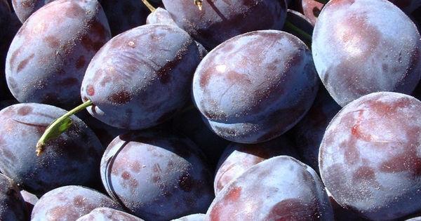 20 de tone de prune moldovenești, distruse de autoritățile din Rusia thumbnail
