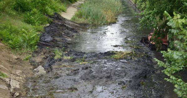 Albia râului Bâc, curățată: Lucrările costă 3,5 milioane de lei thumbnail