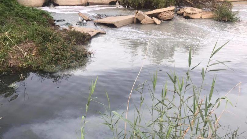 Apa râului Bâc a devenit albă. Legătura cu putoarea din Chișinău