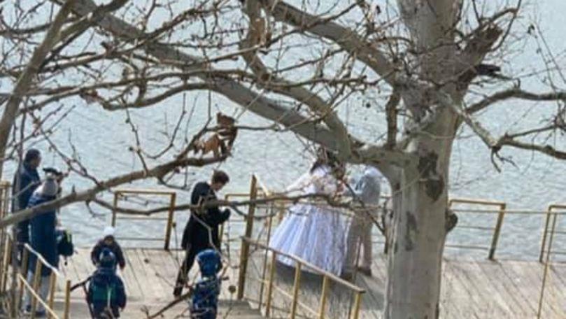 Nuntă pe timp de carantină: Mire și mireasă, filmați la Valea Trandafirilor