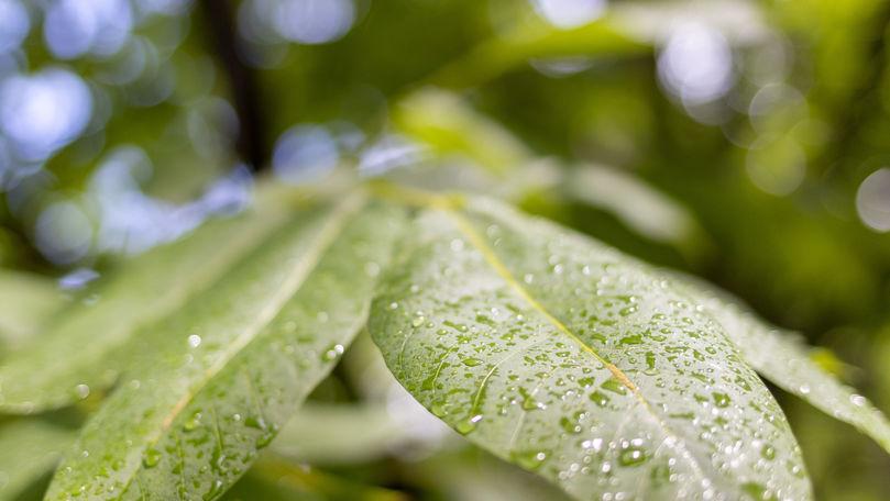 Meteo 2 iulie 2021: Vremea se răcorește. Ploi cu fulgere și +28°C