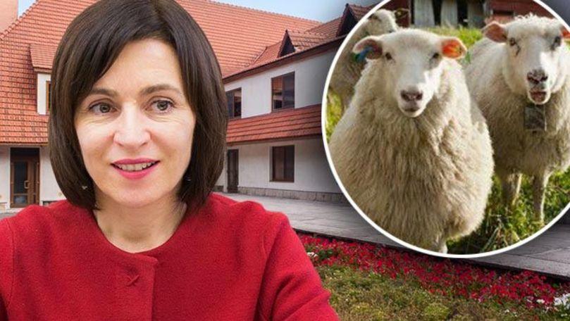Sandu, despre vila prezidențială de la Condrița: Era și o stână acolo