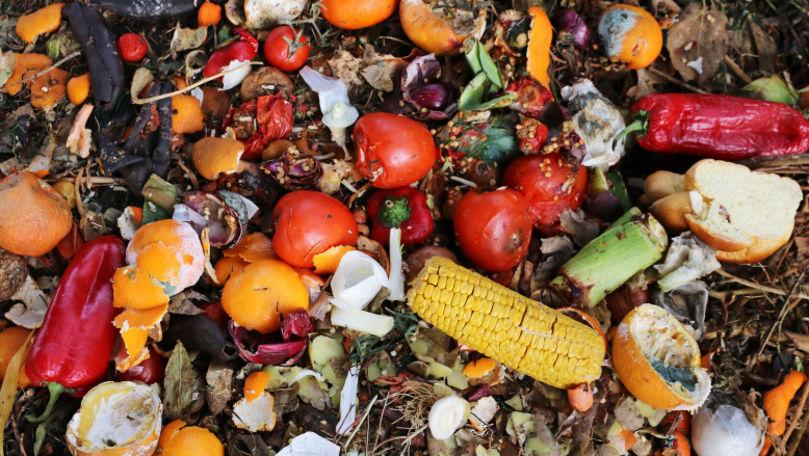 Raport: Aproximativ 40% din producția mondială de mâncare este risipită
