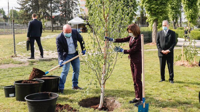 Sandu a sădit copaci la Grădina Botanică cu președintele Lituaniei