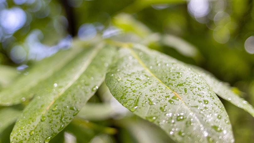 Meteo 11 iunie 2021: Ploi cu fulgere. Zonele vizate și maxime prognozate