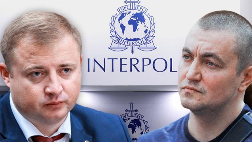 Precizările biroului Interpol despre căutarea lui Platon și Cavcaliuc