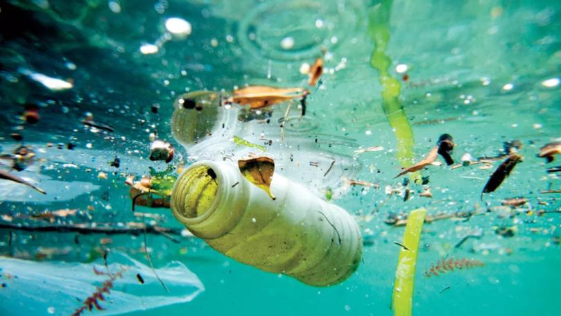 Două studente au inventat o bacterie care transformă plasticul în apă