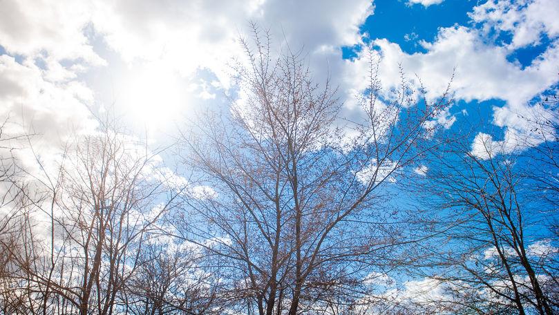 Meteo 21 ianuarie 2020: Vremea se încălzește. Maxime de până la +6°C