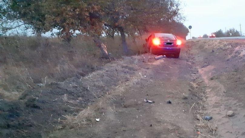 O mașină s-a izbit într-un copac la Căușeni: Ce spune poliția