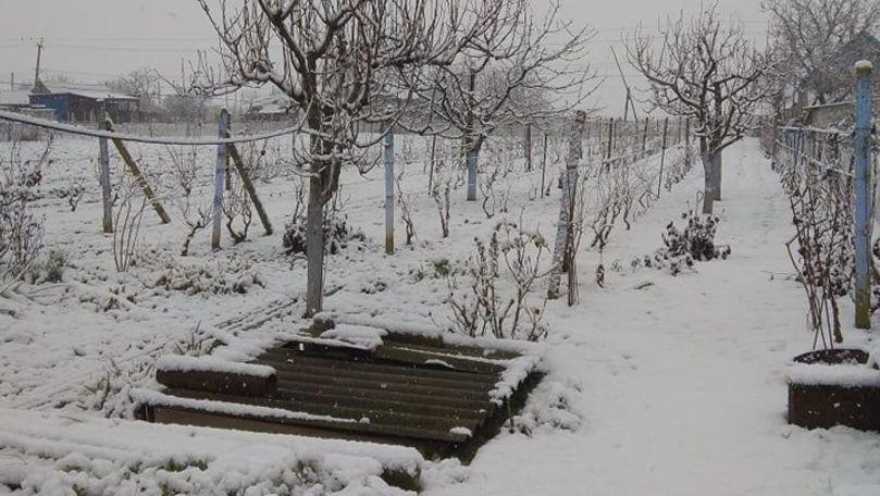A nins ca-n povești în unele localități din Moldova: Reacția oamenilor