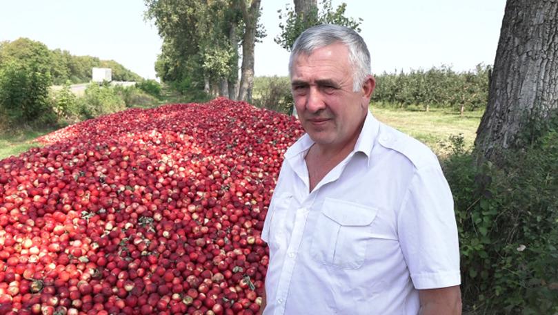 Ce spune fermierul celor 60 de tone de mere descărcate pe drum