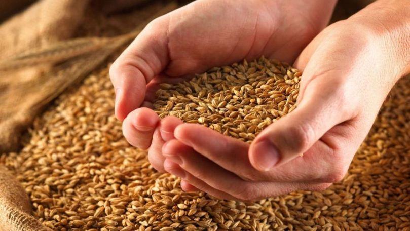 Exportul de grâu, orz şi porumb din Transnistria, interzis până în martie