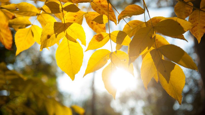 Meteo 14 octombrie 2021: Vremea se încălzește ușor. Maxime prognozate