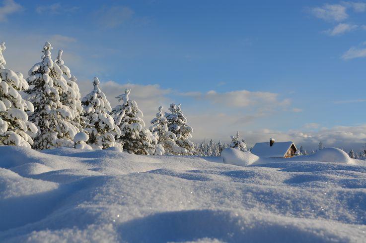 В Вашингтоне подросток на уборке снега за четыре дня заработал $35 тысяч