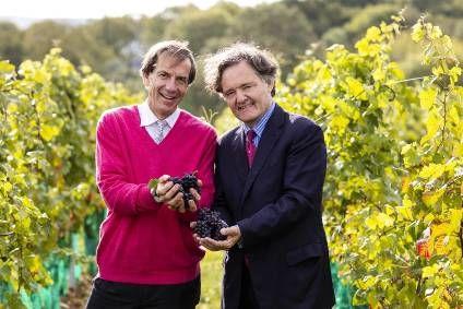 Глобальное потепление делает из английских банкиров виноделов