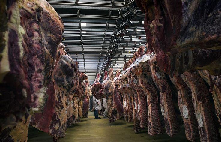 Производители мяса в Молдове сохранят текущие цены на свою продукцию