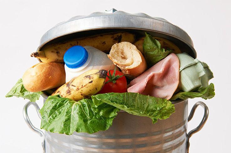 В Молдове выявлены признаки продовольственной расточительности