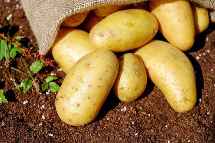 В Молдове резко подорожал картофель