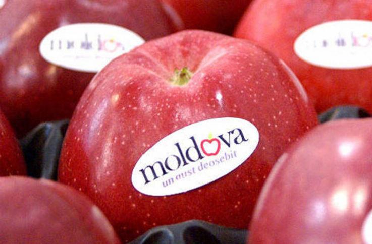 Производители яблок в РМ отправили 160 тонн своей продукции в Индию