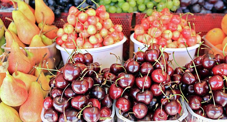Аномально тёплая зима снизит урожай черешни, абрикоса и сливы
