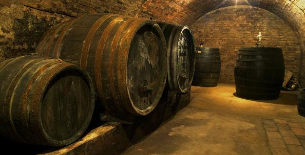 Молдавское вино завоевало три золотые медали на конкурсе в Нидерландах