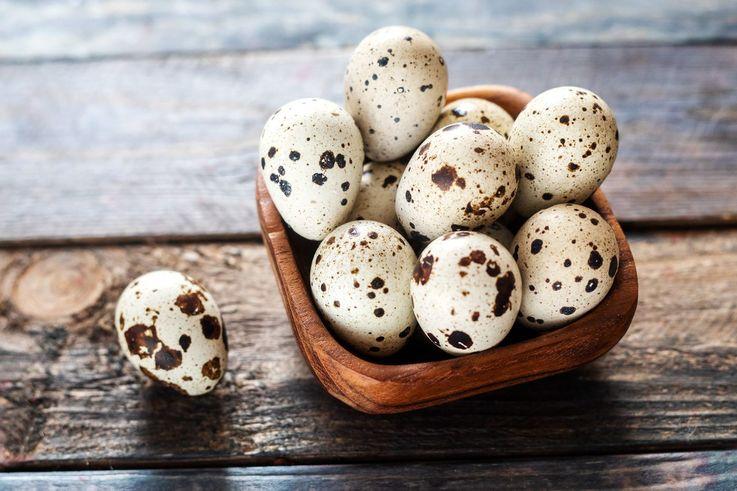 Пандемия стала причиной уничтожения фермером 150 000 перепелиных яиц